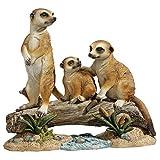 Design Toscano The Meerkat Clan Garden Statue For Sale