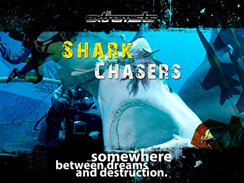 Shark Chasers
