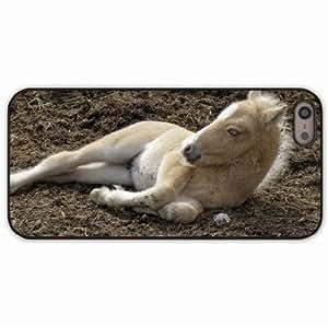 iPhone 5 5S Black Hardshell Case horse playful lie Desin Images Protector Back Cover