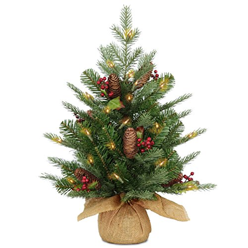 National Tree 2 Foot Feel Real Nordic Spruce Tree with for sale  Delivered anywhere in USA