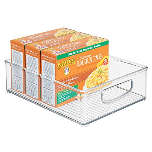 iDesign Linus Plastic Storage Bin with Handles for Kitchen, Fridge, Freezer, Pantry, and Cabinet Organization, BPA-Free, Large