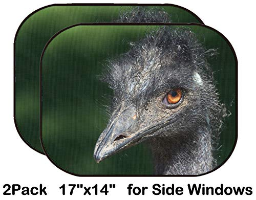 Liili Car Sun Shade for Side Rear Window Blocks UV Ray Sunlight Heat - Protect Baby and Pet - 2 Pack Image ID: 15567682 Closeup Shot of a Grumpy Emu -