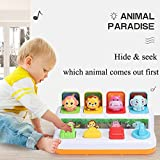 YMDLY Toys Animal Park Interactive Pop Up Music Toy,Up- Early Education Activity Center Toy, Ages 12 Months and up Toddlers.