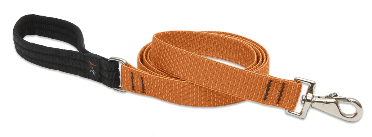 LupinePet Eco 1'' Pumpkin 6-foot Padded Handle Leash for Medium and Larger Dogs