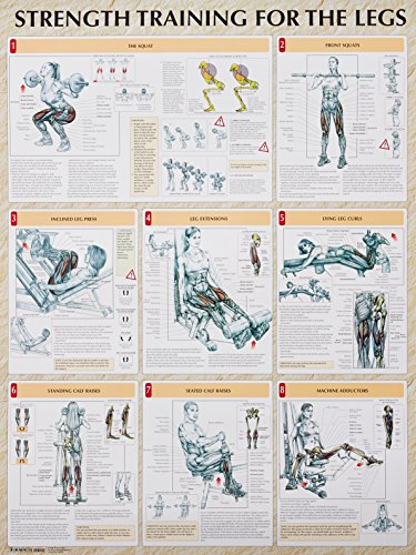Pdf Download Strength Training For The Legs Poster Strength