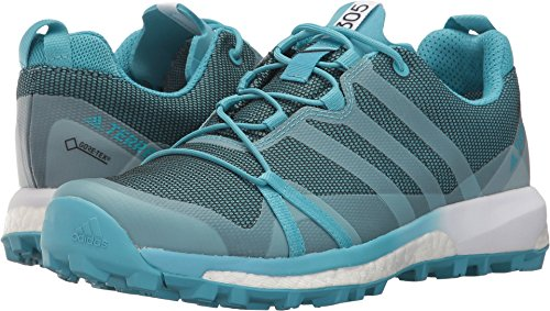 adidas outdoor Womens Terrex Agravic GTX Shoe (10 Vapour BlueClear