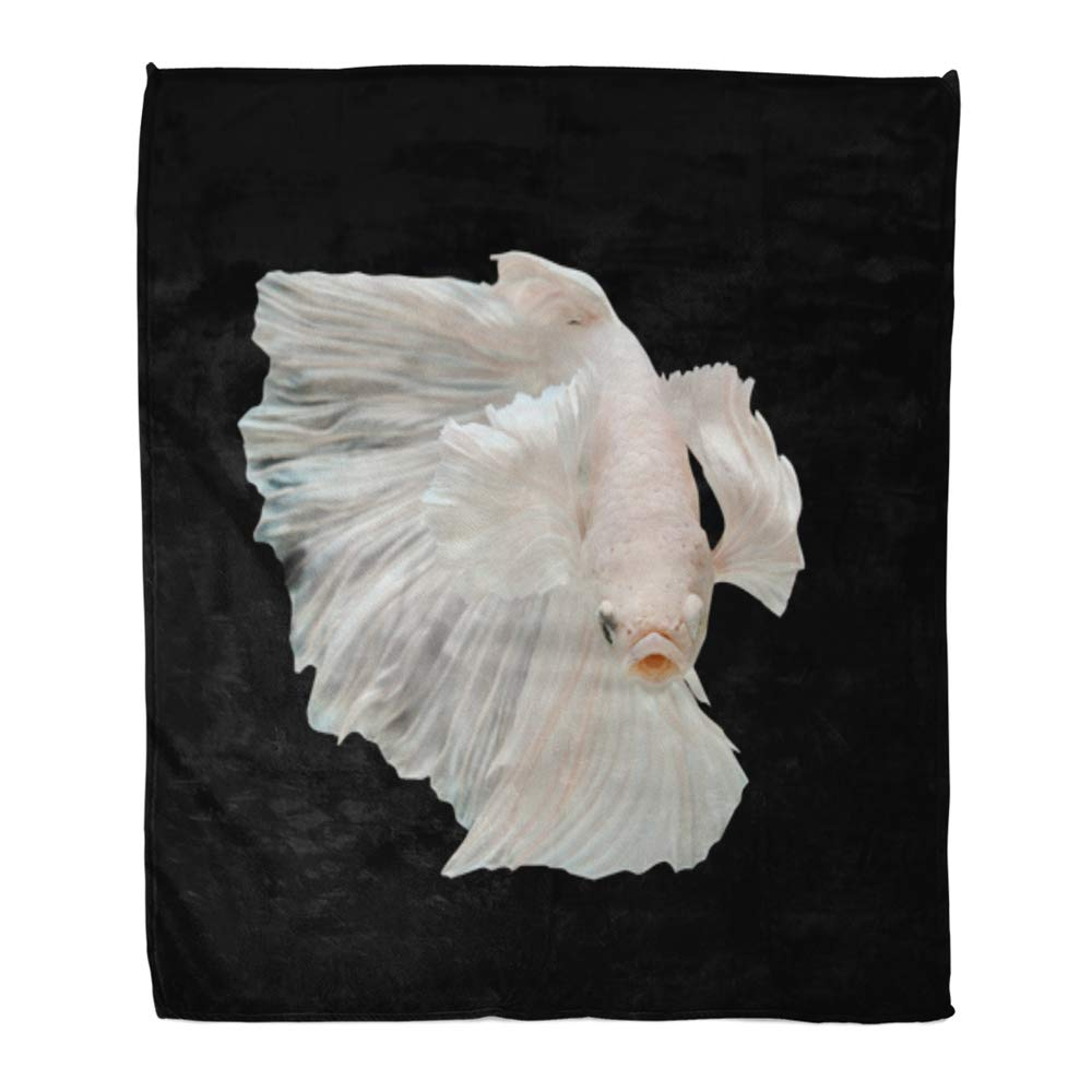 Multi 2 60\ Emvency Throw Blanket Warm Cozy Print Flannel bluee Action Betta Big Ear Aggressive Animal Comfortable Soft for Bed Sofa and Couch 50x60 Inches