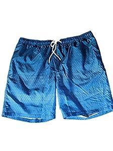 upc 096619317561 product image for Kirkland Signature Men's Swim Short (Variety) (M, Blue Ombre) | barcodespider.com