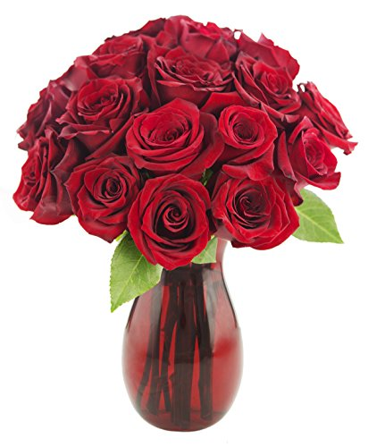 ruby-red-roses-18-red-roses-with-vase-by-kabloom