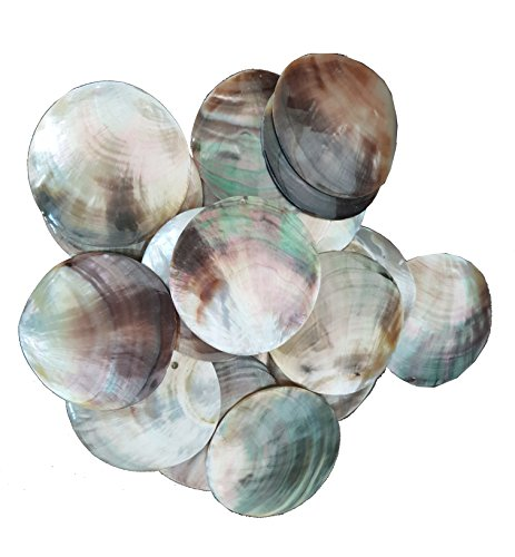 10 Pcs Natural Mother of Pearl (MOP) Discs by East-J