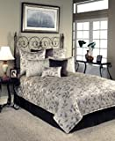 Sherry Kline Harmony Comforter Set, Queen,Taupe, 8 Piece