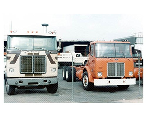 1981 White Road Commander   Expeditor 2 Truck Photo Poster