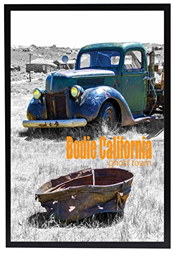 Golden State Art, 20x30 Inch Black Poster Frame w/Plexi-Glass and Hardboard Backing 20 X 30 Art