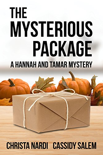 The Mysterious Package (A Hannah and Tamar Mystery Book 1)