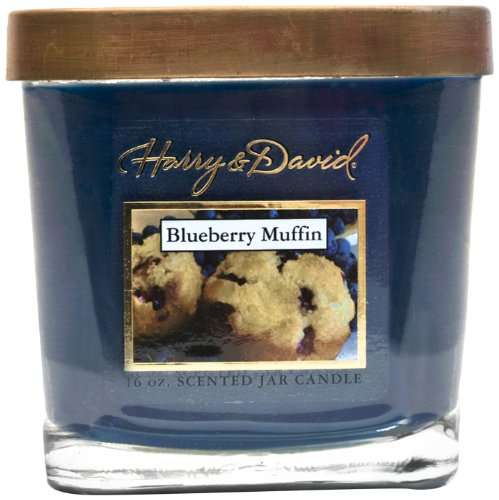 Harry and David 16-Ounce Jar Candle, Large, Blueberry Muffin