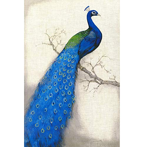 Grace Painter DIY Diamond Painting Cross Stitch Peacock 5D Diamond Embroidery Painting by Number Kit Craft Diamond Painting Home Decor Art Full Drill Round Canvas Size 13.7 x 17.7 Inches by Grace Painter