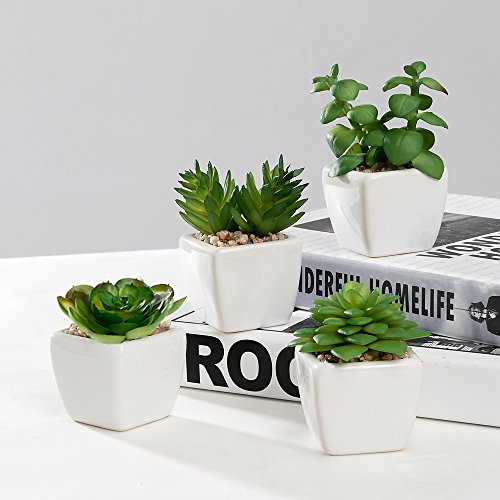Nattol Modern Mini Artificial Succulent Plants Potted in Cube-Shape White Ceramic Pots for Home Decor, Set of 4 (White) by Nattol (Image #2)
