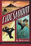 Front cover for the book Firestorm by David Klass
