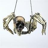 Scary Skeleton Sinister Skull with Lantern Halloween Kitchen Decor Decoration