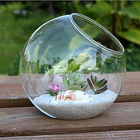 Kicode Ronda clara Botella colgante vaso de vidrio Terrario contenedor hidropónico Decoración del jardín de la boda de la tabla casera 15cm: Amazon.es: ...