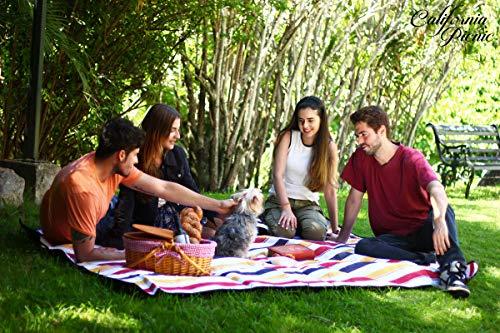 Buy california beaches for families