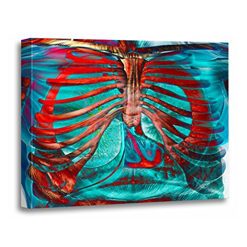 "TORASS Canvas Wall Art Print Skeleton Human Chest Organs Heart Lungs Biology Artwork for Home Decor 24"" x 32"""