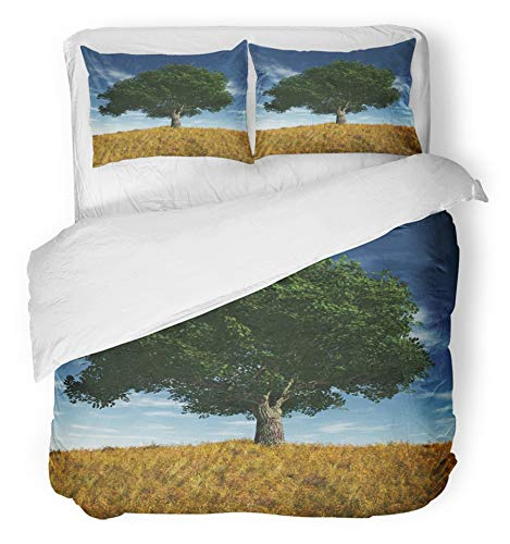 Emvency 3 Piece Duvet Cover Set Breathable Brushed Microfiber Fabric Blue Alone Old Cherry Tree in Summer Day Cloud Cloudy Deep Field Global Grass Heaven Bedding Set with 2 Pillow Covers Twin Size