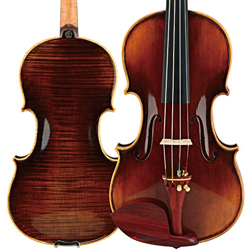 Christina® Strad Master Handmade Finest Glossy Acoustic Wood Violin S800 Full Size 4/4 with Bow Rosin Spare Strings Case