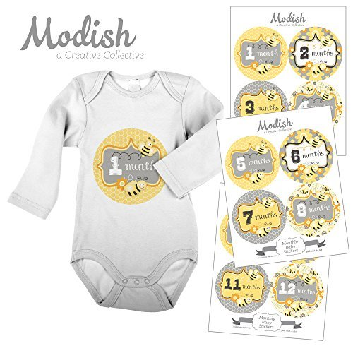 Bumble Bee Nursery - 12 Monthly Baby Stickers, Girl, Bumble Bees, Honey Bees, Baby Belly Stickers, Monthly Baby Stickers, First Year Stickers Months 1-12, Yellow, Gray, Grey, Flowers, Bees, Baby Girl