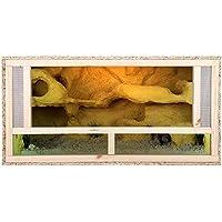 Terrario: Madera Terrario para Reptiles frontal ventilación para serpientes y lagartos 100 x 50 x 50 cm alta calidad…
