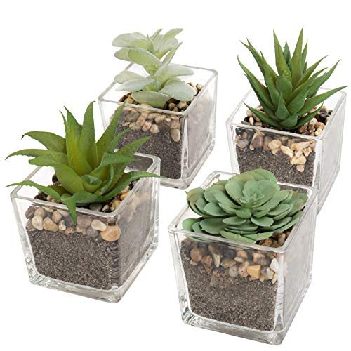 Pot Clear Glass Glass - MyGift Assorted Artificial Echeveria Succulent Plants in Square Clear Glass Pots, Set of 4