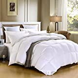 SHEONE Lightweight White Goose Down Comforter-600 Fill Power-100% Cotton Shell Down Proof-Solid White Hypo-allergenic Duvet Insert With Tabs (Queen)