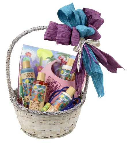 Arizona Sun Cruise and Resort Gift Basket – Say Bon Voyage – Have a Great Trip Gifts – Everything Needed for Vacation – Soothing Skin Care – Sun Care Protection – Any Occasion - Birthday