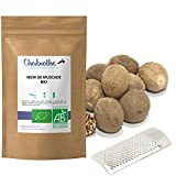 10 Whole Organic Nutmegs 50g + grater