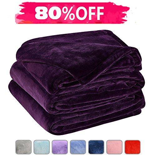 LBRO2M Fleece Bed Blanket Super Soft Warm Fuzzy Velvet Plush Throw Lightweight Cozy Couch Blankets Queen(90-Inch-by-90-Inch) Purple Soft Plush Blanket
