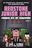 minecraft quest for diamond sword - Zombies Ate My Homework: Redstone Junior High #1