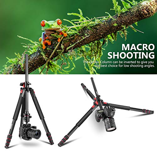 Neewer Camera Tripod Monopod Carbon Fiber with Rotatable Center Column - Portable Lightweight, 72.4 inches/184 Centimeters, 360 Degree Ball Head for DSLR Camera Camcorder up to 33 pounds