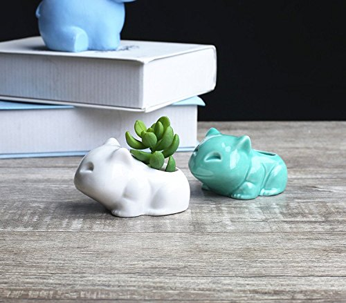 Koreyoshi 2 Pcs Green and Whtie Frog Window Boxes Cute Flower Pot,Modern Ceramic Succulent Planter Pots/Tiny Flower Plant Containers (Style 9) ()
