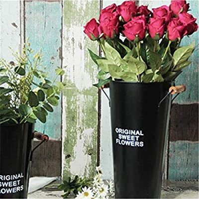 ZMSL Florero de Hierro Retro Vintage Nordic Home Gardening Decoración de riego de Flores Flower Gardening Watering Pot Bottle Home Decor Crafts, Black: Amazon.es: Hogar
