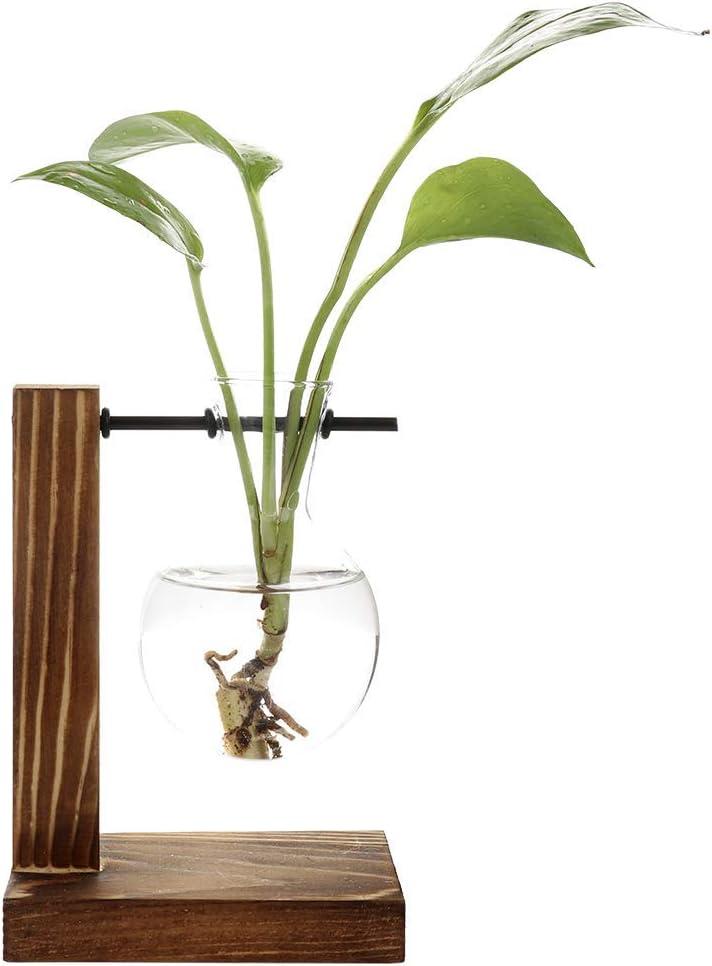Takefuns Hydroponic Vase Propagation Station Vintage Desktop Plant Terrarium Planter Bulb Vase Water Planting Propagation Heart (2 Bulb Vase