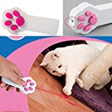 Laser Cat Toys, Pet Cat Dog Catch the LED Light Pointer Interactive Toys Scratching Training Tool Red Pot Exercise Chaser Toy 2 pack, Black + White