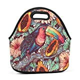 Best Picnic Plus Lunch Boxes - WWINL Woodpecker Forest Fruit Lunch Bag Insulated Reusable Review