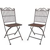 Pair of Titan Outdoor Metal Folding Chair Patio Garden Seat Deck Decor Rustic