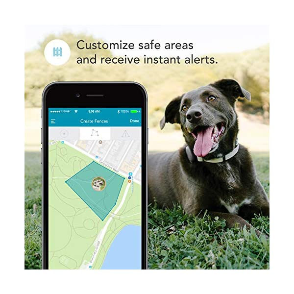 Findster Duo+ Pet Tracker Free of Monthly Fees - GPS Tracking Collar for Dogs and Cats & Pet Activity Monitor 3