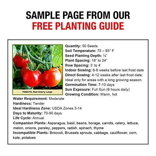 Non Gmo Survival Garden Seed Cache Over 22,000 Seeds 50 Heirloom Varieties