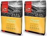 orijen chicken - Orijen 2 Pack of Puppy Formula Dog Food, 12 Ounces Per Bag