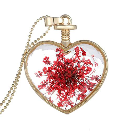 Hmlai Women Dry Flower Heart Glass Wishing Bottle Pendant Necklace Mother's Day Jewelry Gift (A)