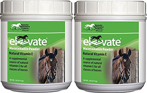(2 Pack) KENTUCKY PERFORMANCE PROD 044097 Elevate Maintenance Powder Supplement For Horses, 2 lb by Kentucky Performance