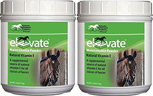 (2 Pack) KENTUCKY PERFORMANCE PROD 044097 Elevate Maintenance Powder Supplement For Horses, 2 lb