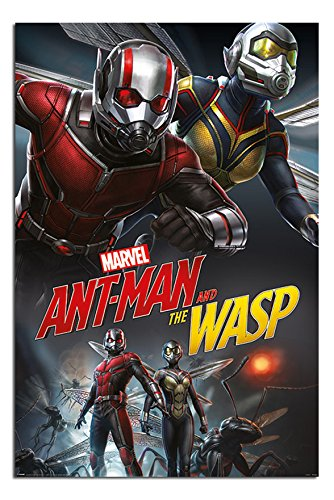 Ant Man And The Wasp Poster 24x36 Poster24x36 Org